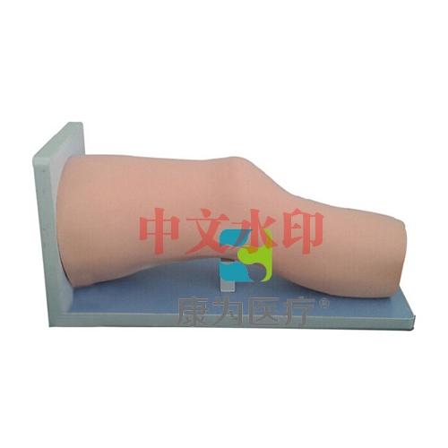 """""""康为医疗""""高级电子膝关节腔内注射模型"""