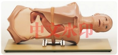 """""""康为医疗""""CLA4内窥镜检查OGI模型(消化内科技能模型)"""
