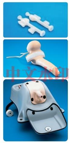 """""""康为医疗""""60374泌尿系内窥镜训练模型"""