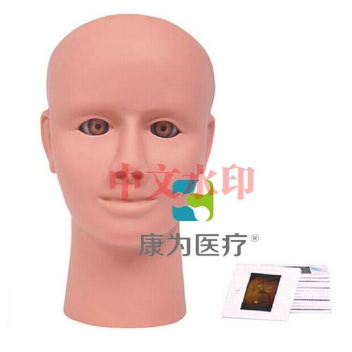 """""""康为医疗""""高级眼视网膜病变检查模型"""
