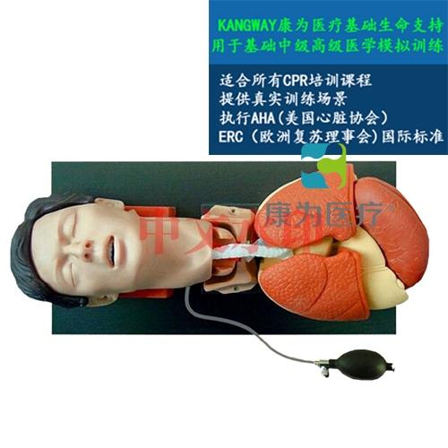 """""""亚博体育网页版登陆医疗""""高级气管插管训练仿真亚博体育官方版"""