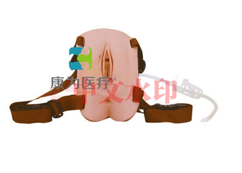"""""""康为医疗""""穿戴式女性导尿模型"""