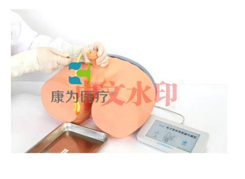 """""""康为医疗""""电子男性导尿模型"""