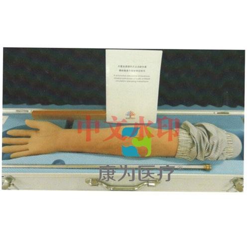 """""""亚博体育网页版登陆医疗""""内置血液循环系统全功能高仿真静脉输液手臂"""