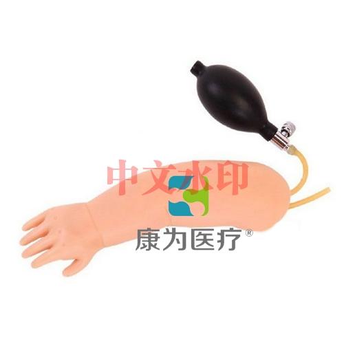 """""""康为医疗""""高级婴儿动脉穿刺训练手臂模型"""