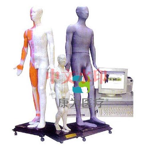"""""""康为医疗""""键控多媒体针灸人体穴位发光模型"""