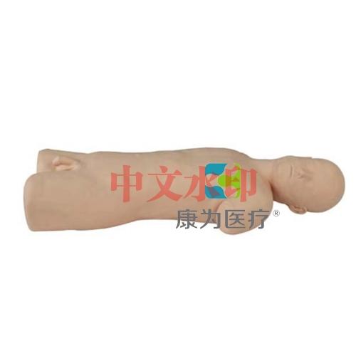 """""""康为医疗""""高级综合穿刺术技能训练标准化模拟病人,综合穿刺模拟人"""