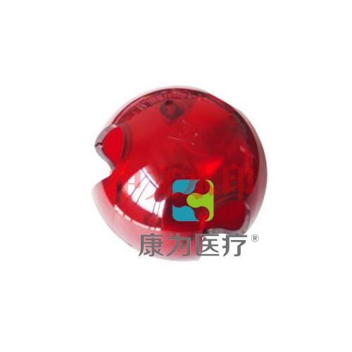 """""""康为医疗""""鼠玩具球"""