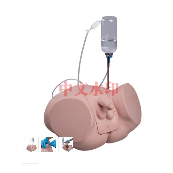 德国3B Scientific®专业版导尿训练模型,男性