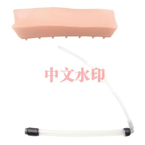 德国3B Scientific®老年人LOR(无阻力)腰椎插件,用于硬膜外脊椎注射训练模型
