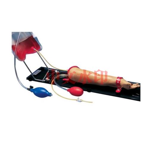 德国3B Scientific®一岁大幼童注射训练手臂亚博体育官方版