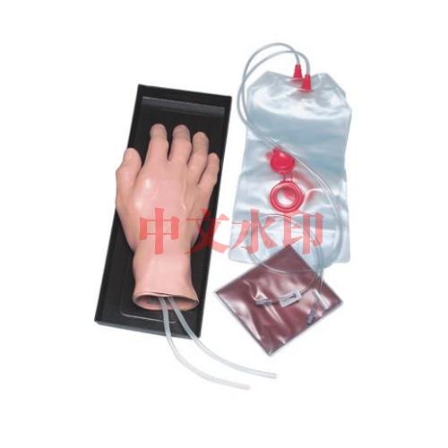 德国3B Scientific®静脉注射手亚博体育官方版
