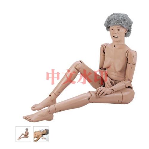 德国3B Scientific®基础型GERi™护理技术老年人医护训练模型 数量