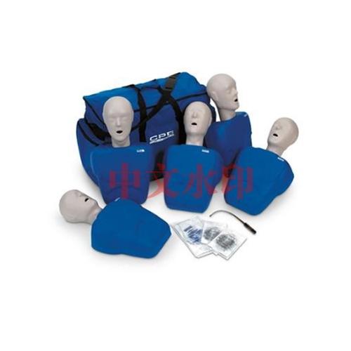 德国3B Scientific®成人/儿童人体亚博体育官方版,5件装