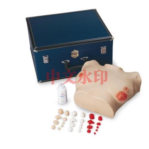 德国3B Scientific®高级胸部检验亚博体育官方版