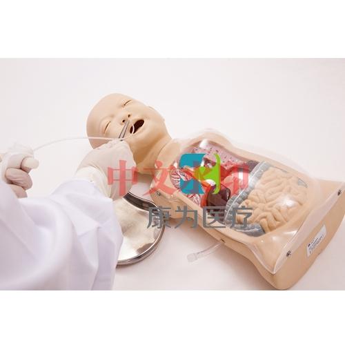 """""""yzc亚洲城 唯一 官网医疗""""婴儿透明洗胃示教模型"""