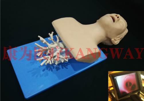 """""""康为医疗""""呼吸介入-纤支镜介入"""