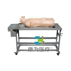 """""""亚博体育网页版登陆医疗""""高级综合穿刺术与叩诊检查技能训练标准化模拟病人"""