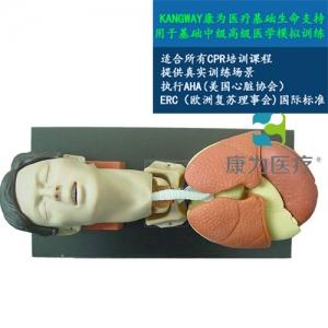 """""""康为医疗""""成人气管插管训练仿真模型,成人气管插管模型厂家"""