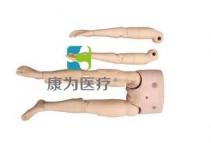 """yzc亚洲城 唯一 官网医疗""可更换的四肢模型"