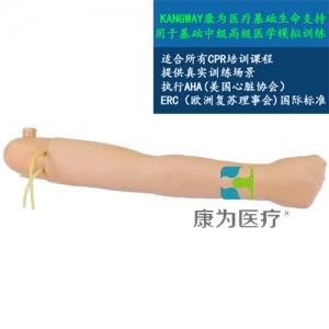 """""""yzc亚洲城 唯一 官网医疗""""高级手臂血压测量模型(与心肺复苏模型配套使用)"""