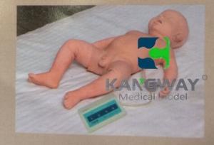 """""""yzc亚洲城 唯一 官网医疗""""高级婴儿腰椎穿刺电子仿真模型"""