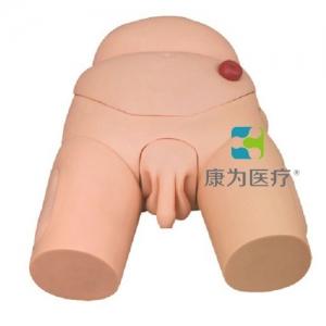 """""""康为医疗""""高级整体男性导尿模型"""