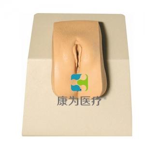 """""""yzc亚洲城 唯一 官网医疗""""高级着装式女性导尿模型"""