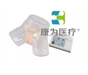"""""""yzc亚洲城 唯一 官网医疗""""透明女性电子导尿模型"""