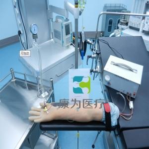 """yzc亚洲城 唯一 官网医疗""高级电动脉搏式手臂动脉及静脉穿刺练习模型"