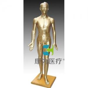 """""""康为医疗""""针灸铜人178CM"""