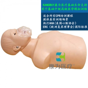 """yzc亚洲城 唯一 官网医疗""青年半身心肺复苏模型"