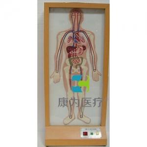 """yzc亚洲城 唯一 官网医疗""浮雕式大小循环电动模型"