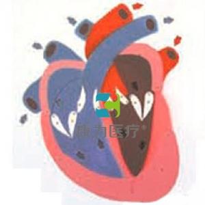 """""""亚博体育网页版登陆医疗""""心脏收缩、舒张与瓣膜开闭演示亚博体育官方版"""
