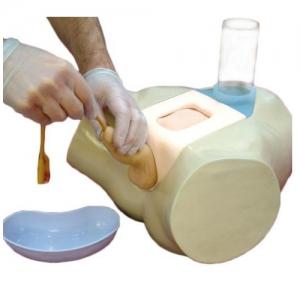 德国3B Scientific®插管模拟器 – 供男性尿管和耻骨上膀胱导管插管临床研究