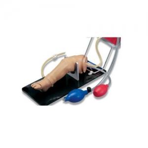 德国3B Scientific®新生儿骨内输液和注射用腿部模型