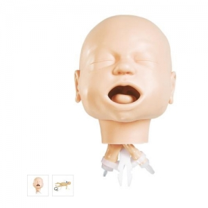 德国3B Scientific®婴儿气道管理训练亚博体育官方版