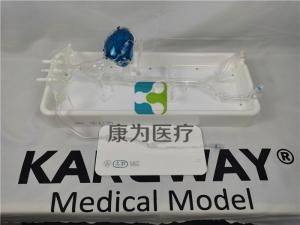 """""""康为医疗""""冠脉介入模拟器"""