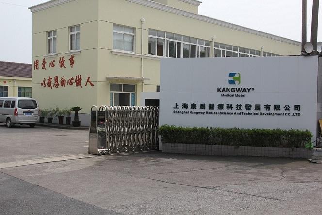 康为医疗人体模型浦东临港工业园