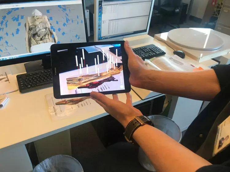 研究人员推出 3D 人体解剖亚博体育官方版,yabo亚博体育官网生练打针不用互相扎了