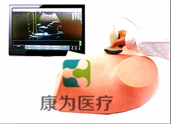 超声引导下羊膜穿刺术训练亚博体育官方版